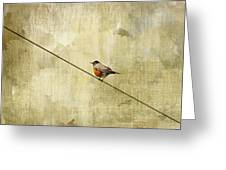 On The Wire Greeting Card