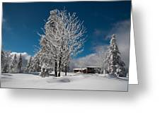 Winter On The Wurmberg, Harz Greeting Card