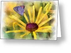 On The Yellow Greeting Card