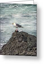 On Watch Greeting Card
