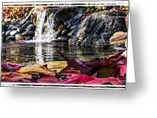 On Waters Edge Greeting Card