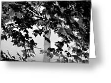 Once Upon A Time In Bw Greeting Card