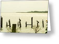 Seadrift Texas Only One Empty Seat Greeting Card