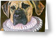 One Formal Pooch Greeting Card by Susan A Becker