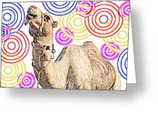 One Funky Camel Greeting Card