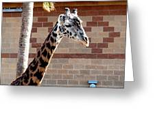 One Giraffe Greeting Card