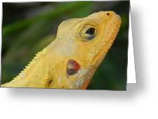 One Happy Lizard Greeting Card