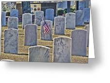 One Lonely Flag Greeting Card