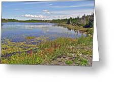 One Of Many Lakes In Newfoundland Greeting Card