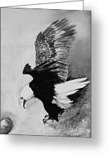 One Of My Eagles Greeting Card