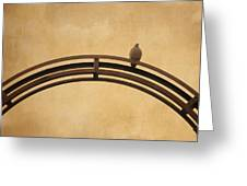 One Pigeon Perched On A Metallic Arch. Greeting Card