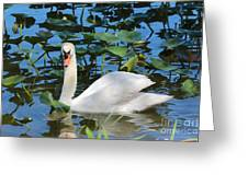 One Swan In The Lilies Greeting Card