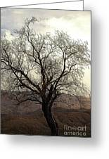 One Tree Greeting Card