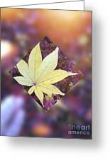 One Yellow Maple Leaf Greeting Card