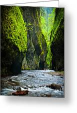 Oneonta River Gorge Greeting Card