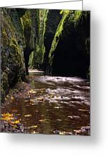 Onieata Gorge Greeting Card