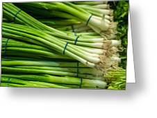 Onion With Chives Greeting Card