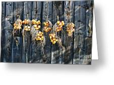 Onions And Barnboard Greeting Card