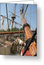 Only Masts Greeting Card
