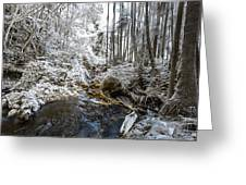Onomea Stream In Infrared Greeting Card