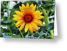 Onyx Store Sunflower Greeting Card