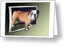 Oof Dog Greeting Card