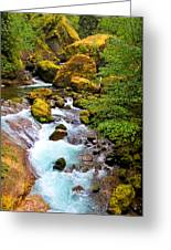 Opal Rivers Greeting Card