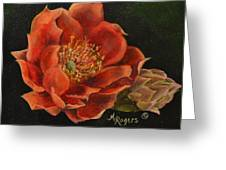 Open Bloom Greeting Card