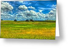 Open Pastures Greeting Card