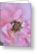 Open Pink Rose Greeting Card