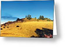 Open Range Greeting Card by Ric Soulen
