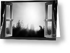 Open Window At Night Bw Greeting Card