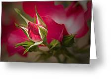Opening Act Greeting Card