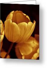 Opening Tulip Flower Golden Monochrome Greeting Card