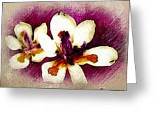 Opulent Orchid Greeting Card