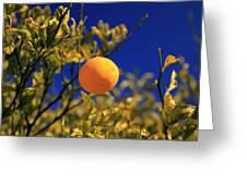 Orange And Blue Sky Greeting Card