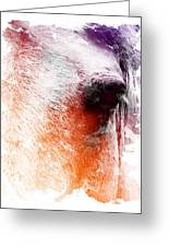 Orange And Violet Abstract Horse Greeting Card