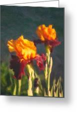 Orange Bearded Irises Greeting Card
