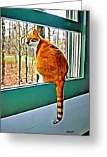 Orange Cat In Window Greeting Card