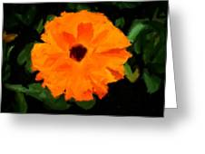 Orange Country Flowers - Impressionist Series Greeting Card