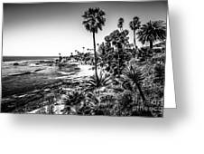 Orange County California In Black And White Greeting Card