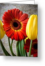 Orange Daisy With Tulips Greeting Card