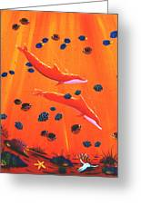 Orange Dolphins Greeting Card