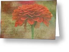 Orange Floral Fantasy Greeting Card