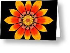 Orange Gazania I Flower Mandala Greeting Card by David J Bookbinder
