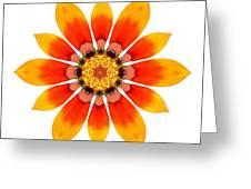 Orange Gazania I Flower Mandala White Greeting Card