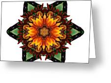Orange Gazania IIi Flower Mandala White Greeting Card