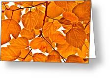 Orange Leaves Greeting Card