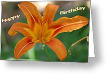 Orange Lily Birthday 1 Greeting Card