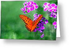 Orange Monarch Butterfly Greeting Card